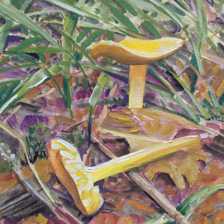Still life with Yellow Mushrooms, $60